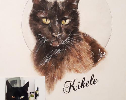Portraitzeichnung Tierportrait